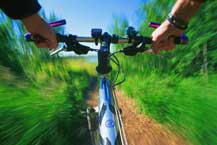 Bicycle riding is allowed on some greenways.